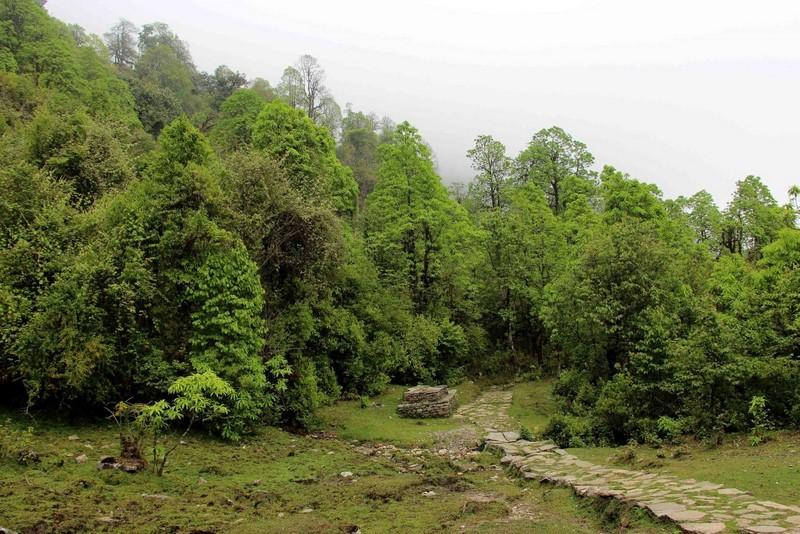 Тропы Непала