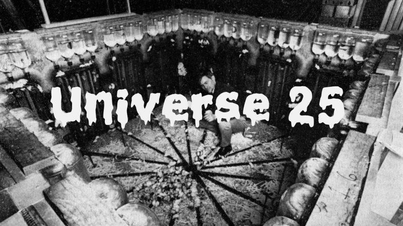 Вселенная 25